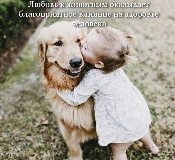 Любовь к животным оказывает благоприятное влияние на здоровье человека
