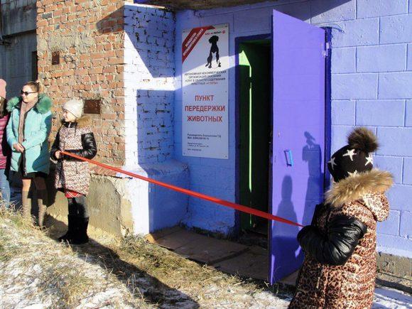 Грант Президента России помог защитникам животных открыть приют