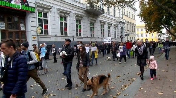 Всеукраинский марш за права животных