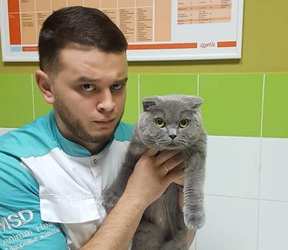 Анна Разинова написала заявление на ветеринара спасающего животных.