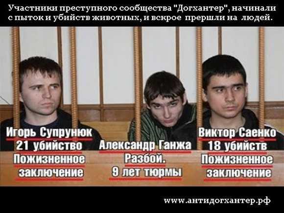 Уголовно-правовая характеристика жестокого обращения с животными (ст.245 УК РФ) Введение.