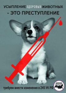 Усыпление животных - Закон должен работать, живодёр - сидеть