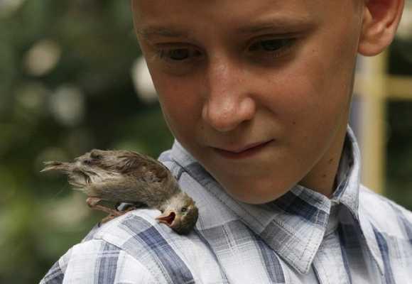 Животные ценят добрые дела и любовь.