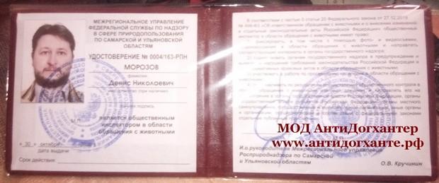 Морозов Денис Николаевич - общественный инспектор в области обращения с животными