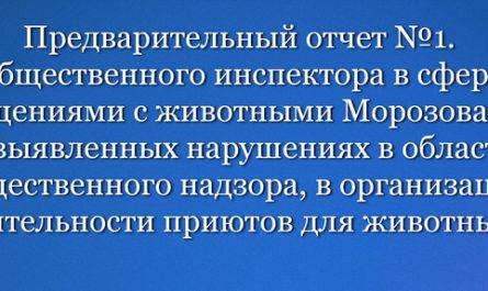 Общественного инспектора в сфере обращениями с животными Морозова Д.Н.