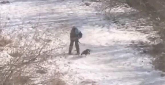 полиция Владивостока ищет юного живодёра