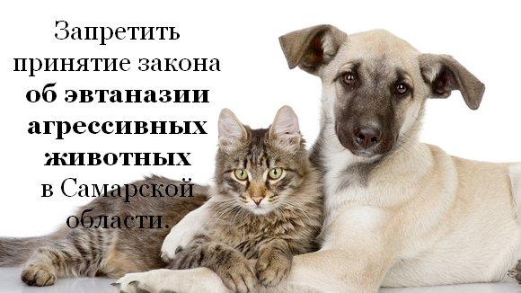 Петиция. Запретить принятия регионального закона о эвтаназии агрессивных домашних животных