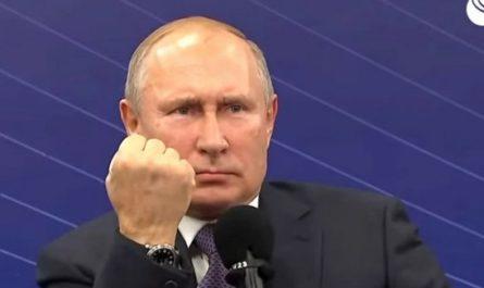 Путин по результатам проверки отношения к животным, утвердил перечень поручений